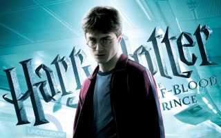 Гарри поттер сценарий дня рождения