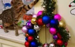 Красивый рождественский венок своими руками