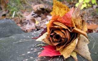 Поделка из листьев фото