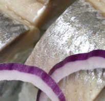 Канапе из сельди рецепты с фото